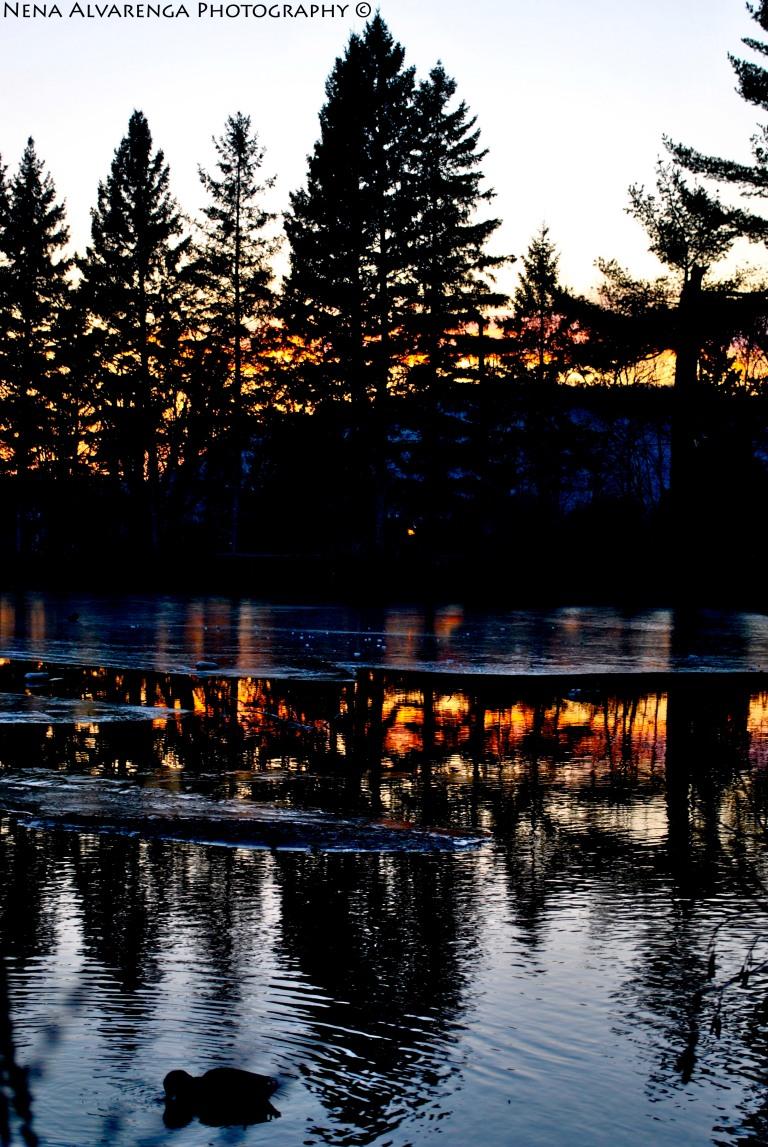 Half Frozen Lake
